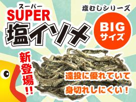 SUPER塩イソメ